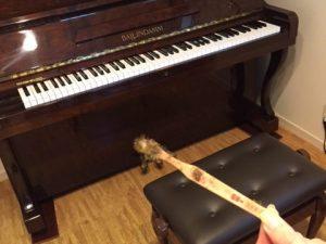 調律の仕事でこんな出来事がありました。それはピアノのタイムカプセルです