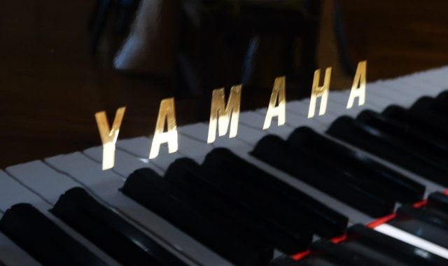 ヤマハG3E(d)
