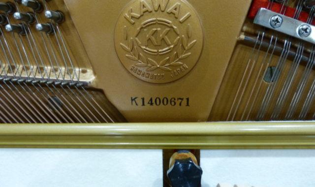 P1080527